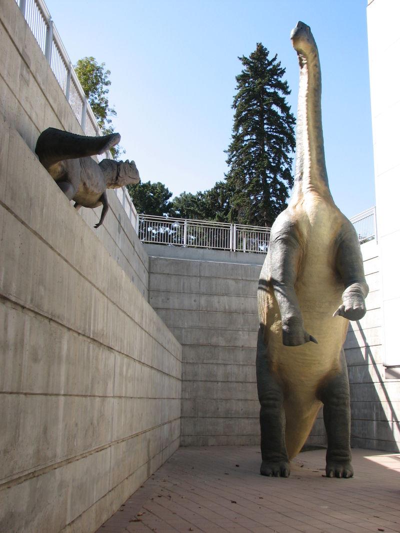 Dinosaur 005