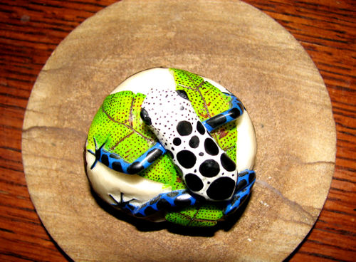 Poison dart frog a
