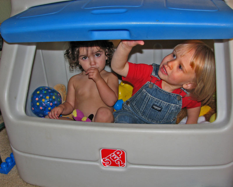 E and H in toybox
