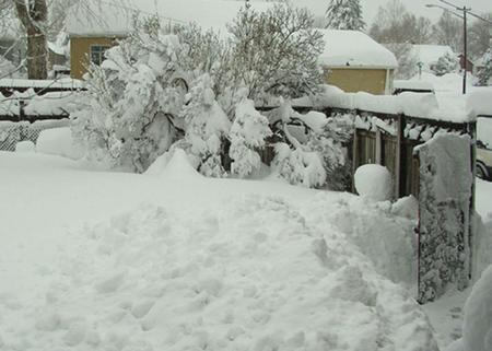 3_feet_of_snow.jpg