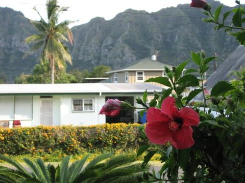 Hawaii_017