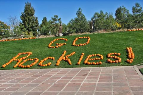 Go_rockies_2