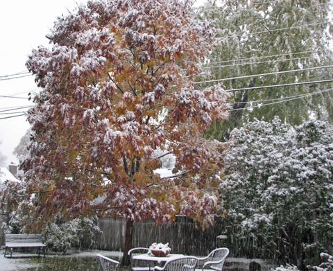9_am_snowing