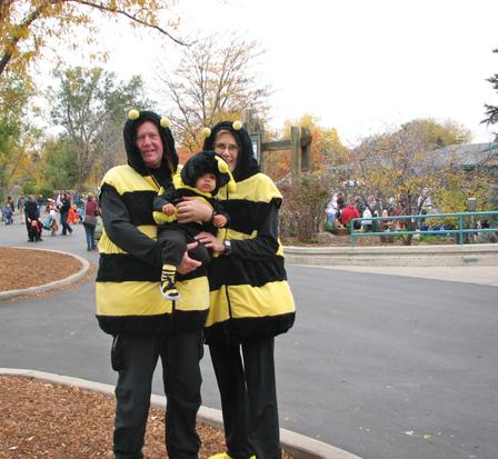 Bumblebee_family