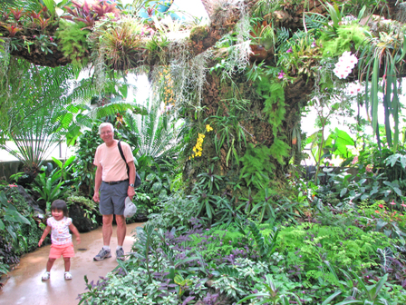 B_c_in_cloud_forest_room_1