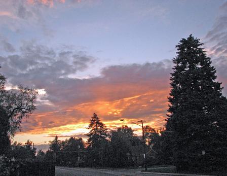Backyard_sunset