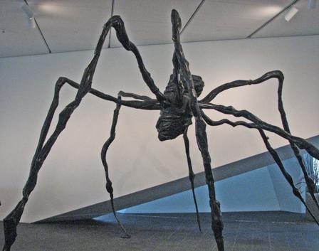 Dam_spider_1