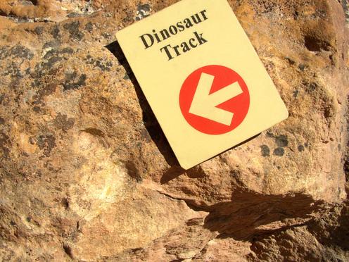 Dino_track