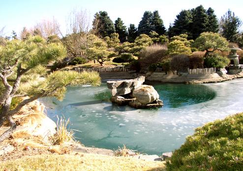 Frozen_japanese_pond