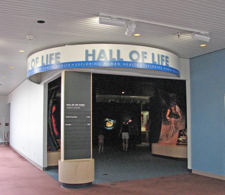 Hall_of_life
