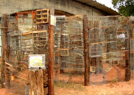 labarinth_of_confiscated_poacher_cages