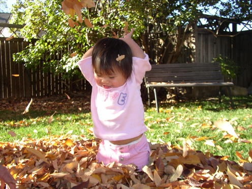 Throwing_leaves_1
