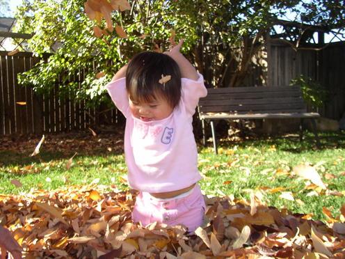 Throwing_leaves_1