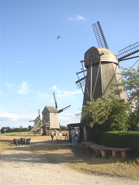 Group_of_windmills_1