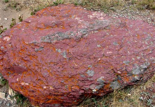 Red Argilite Rock